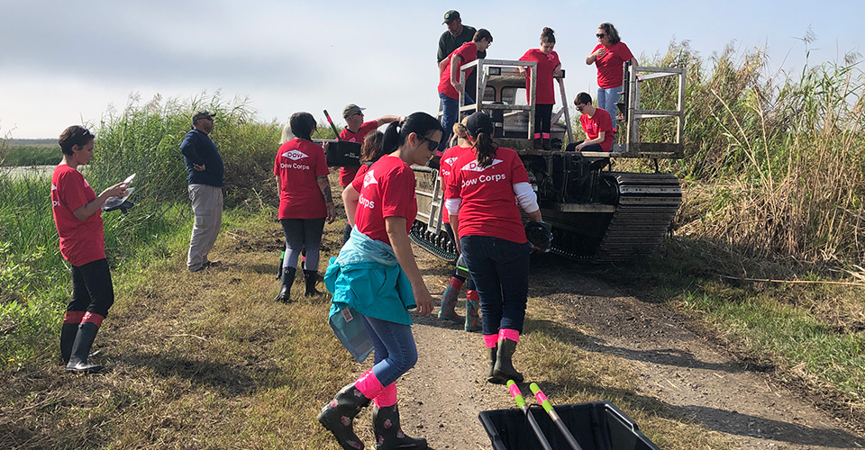 Dow volunteers prepare for tree planting event